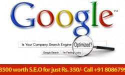 Get your business on top pages of google Search Engine Optimization