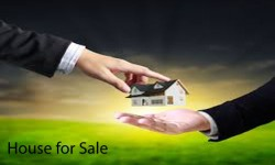 House For Sale Adoor Pathanamthitta